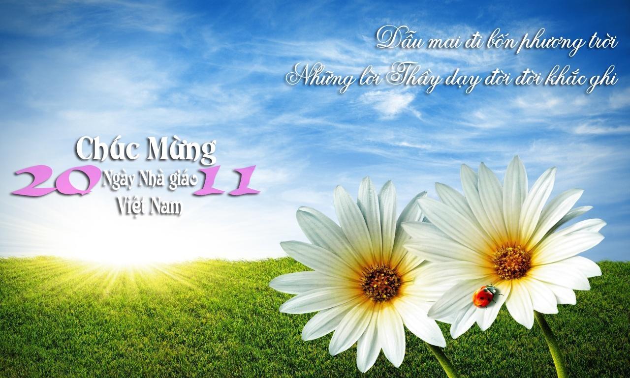 Những bài thơ về hoa và thầy cô là những bài thơ chan chứa tình cảm